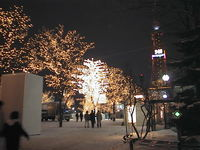 ホワイトイルミネーション(札幌)