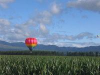 上士幌の気球